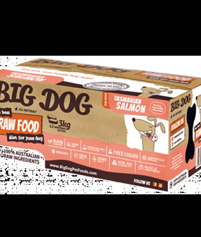 big dog salmon