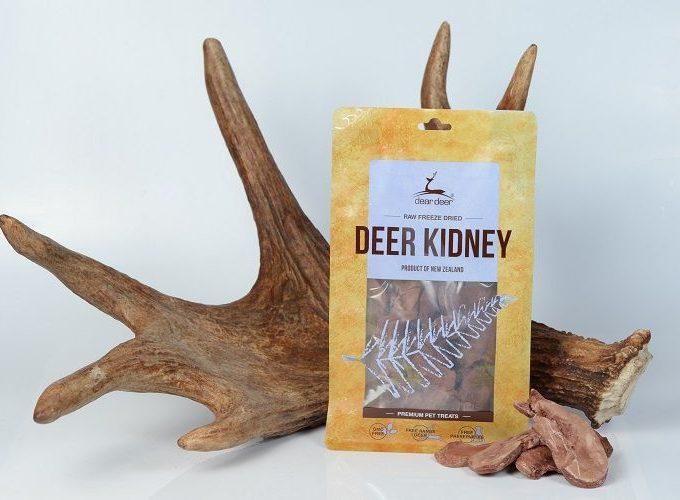 Deer Kidney