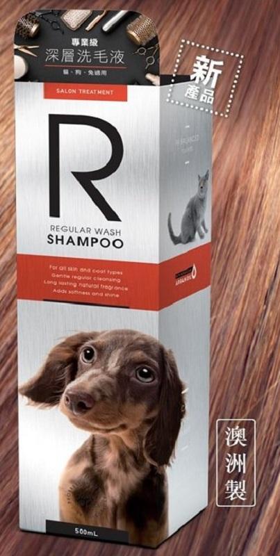 Regular Wash Shampoo