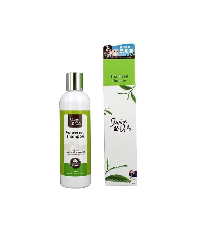 Divine Pets Tea Tree Shampoo 極致清爽洗毛液 250ML