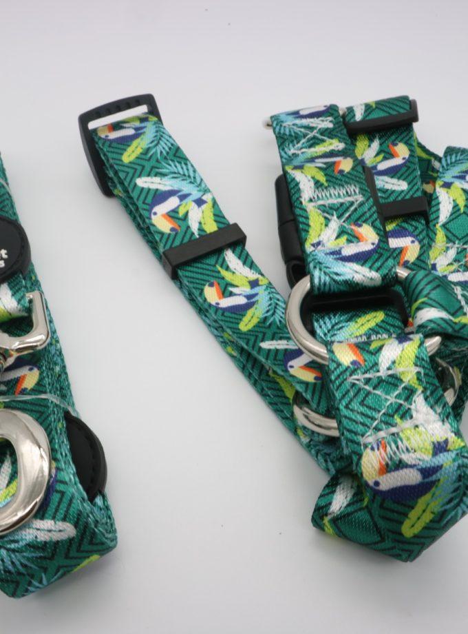 牽引繩+伸縮胸背帶(綠鳶 ) L