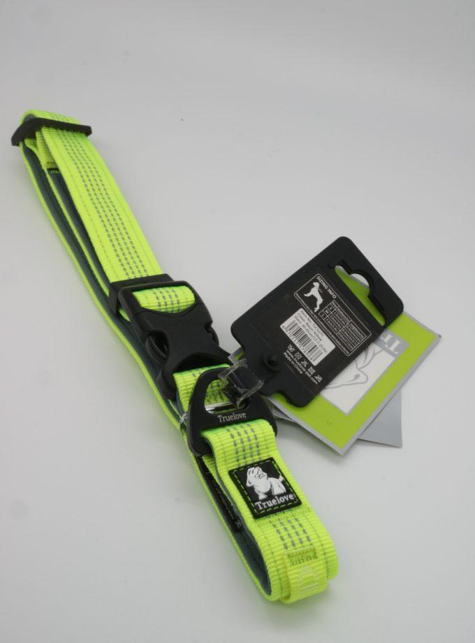 狗狗牽引繩(螢光綠)