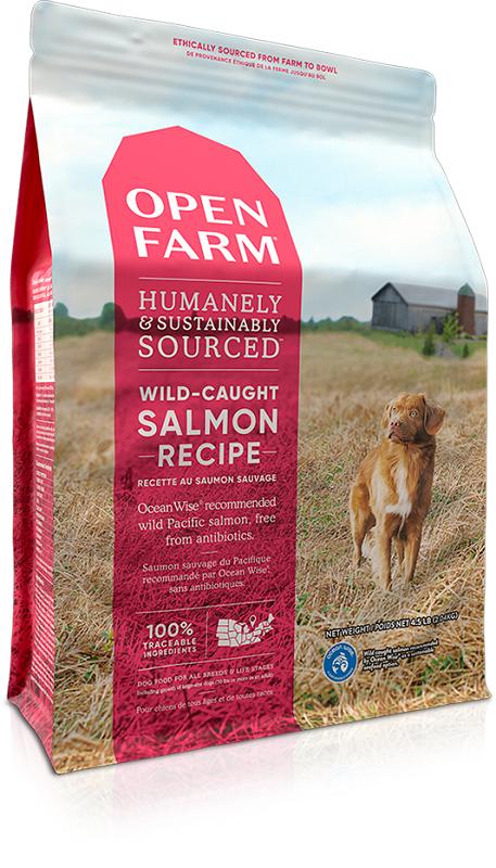 OPEN FARM Salmon Recipe