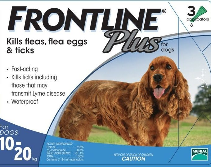 frontline plus flea