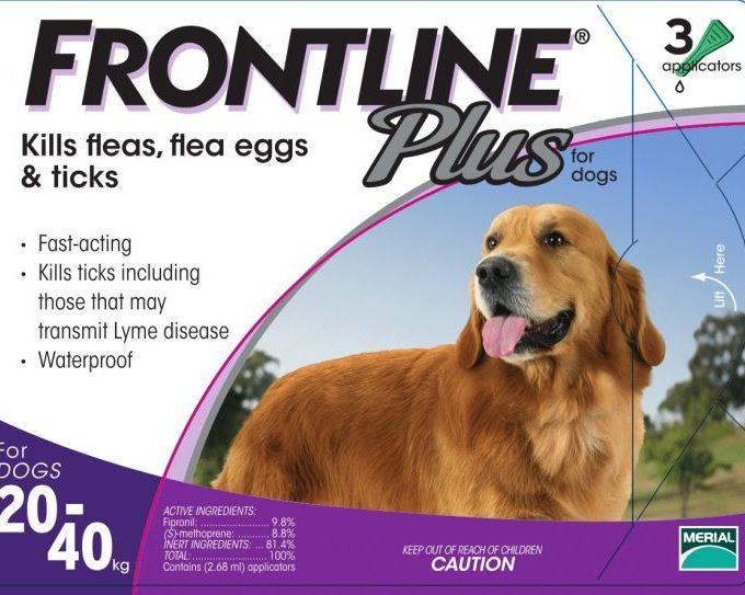 frontline 狗